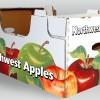 Costco Northwest Apples